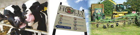 Visit Old Holly Farm
